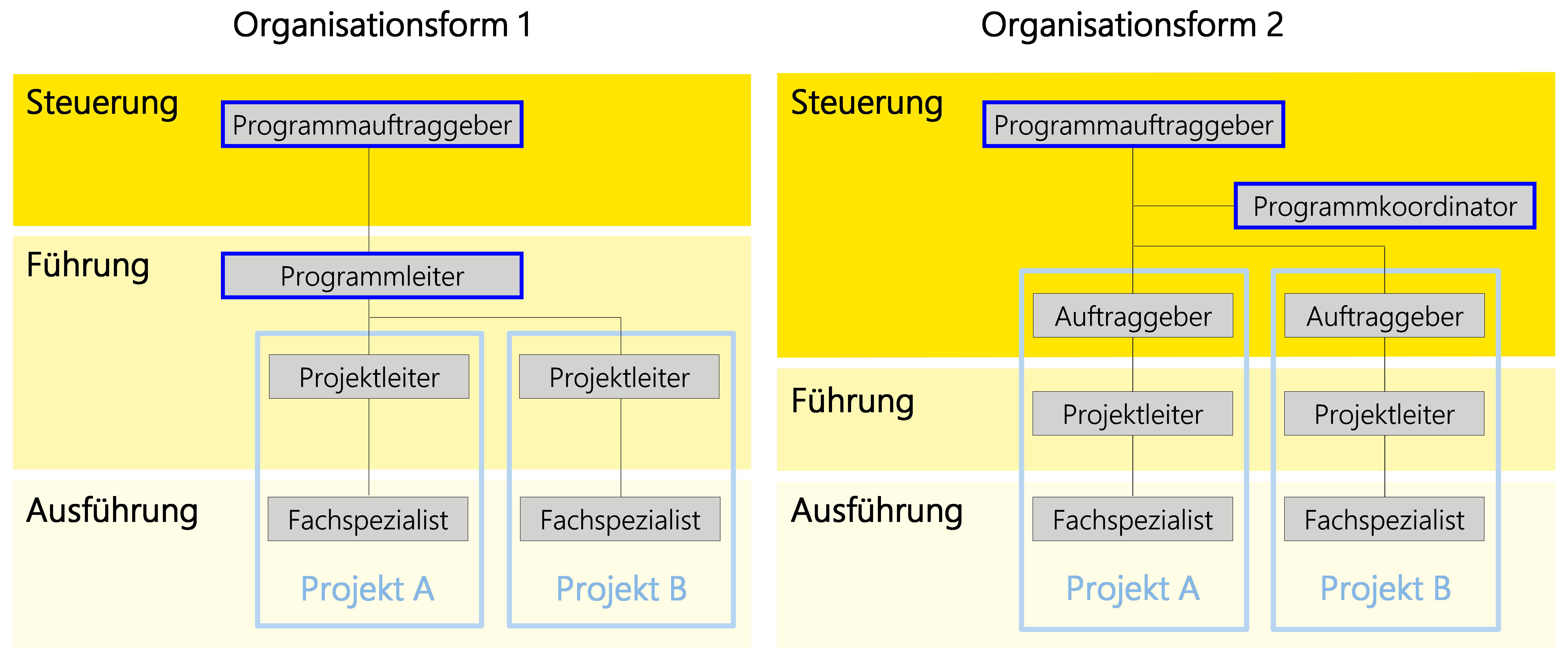 Abbildung7: Übersicht über die zwei dokumentierten Organisationsformen