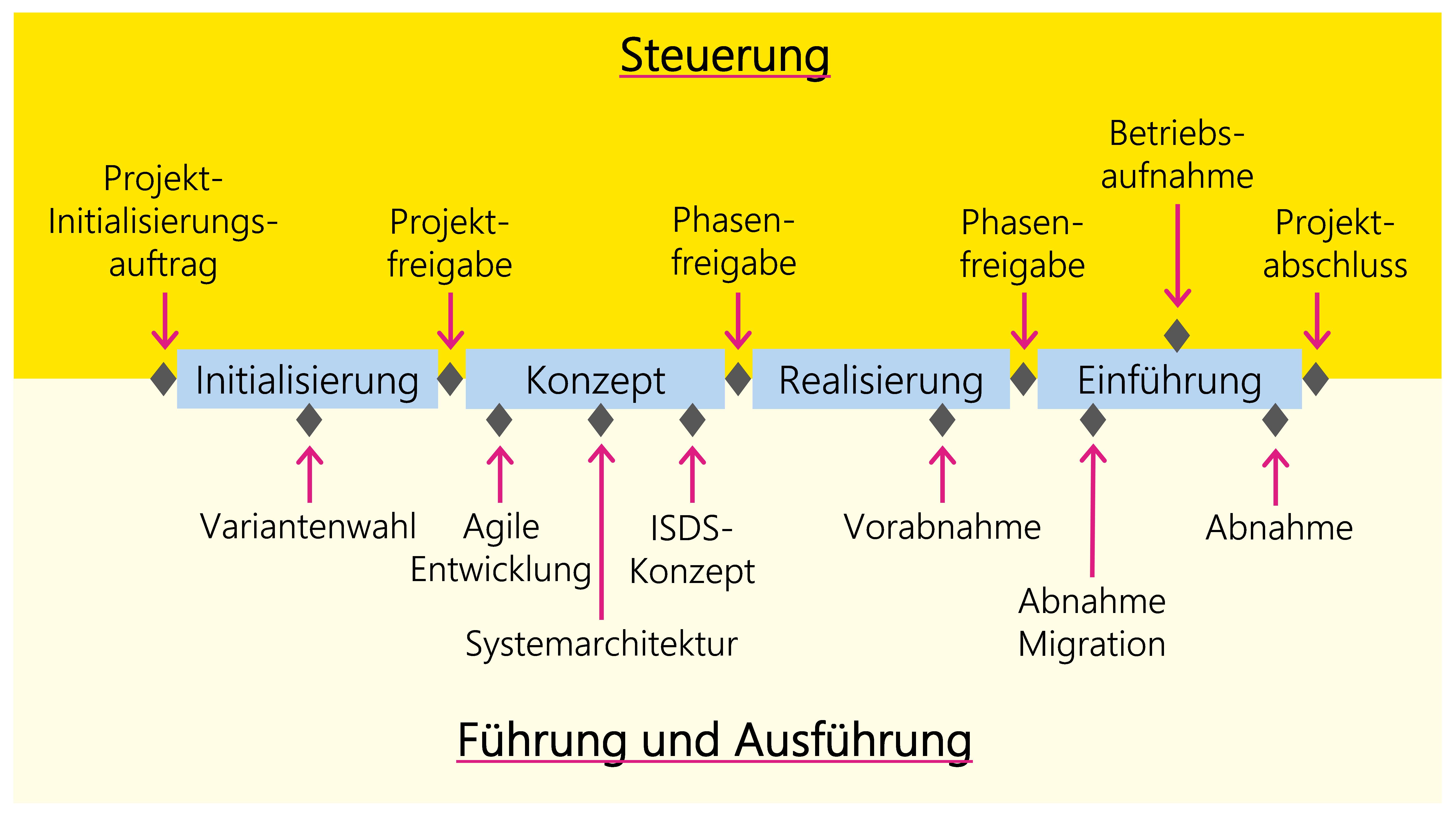 Abbildung 18: Entscheide im Szenario IT-Individualanwendung