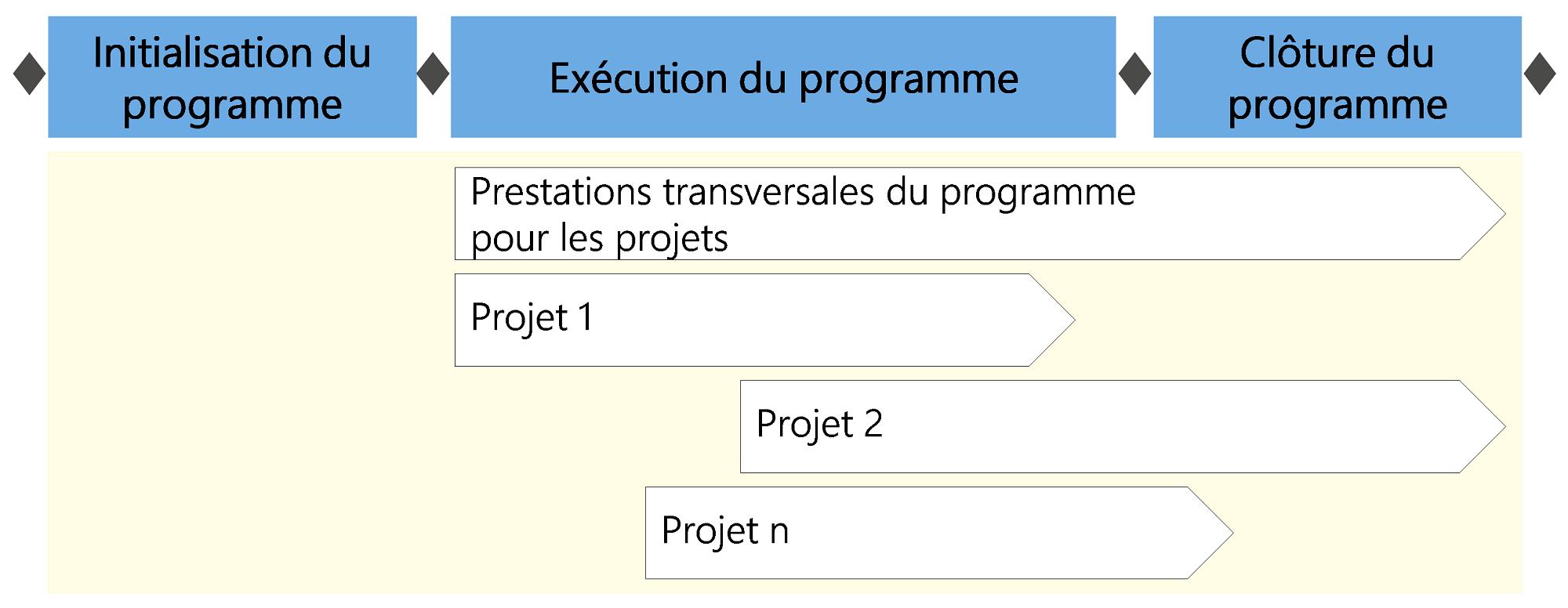Figure2: Prestations transversales dans le cadre du programme