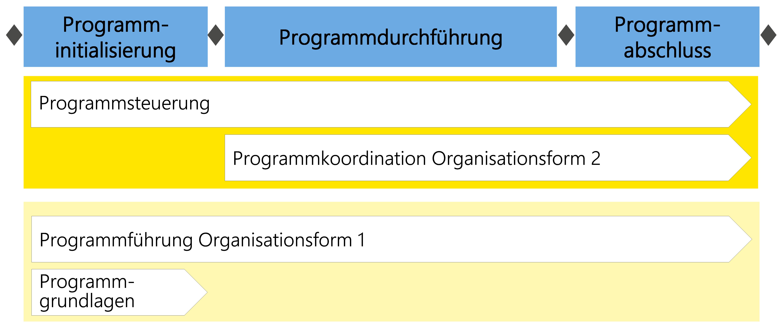 Abbildung6: Übersicht über die Module im Programmmanagement