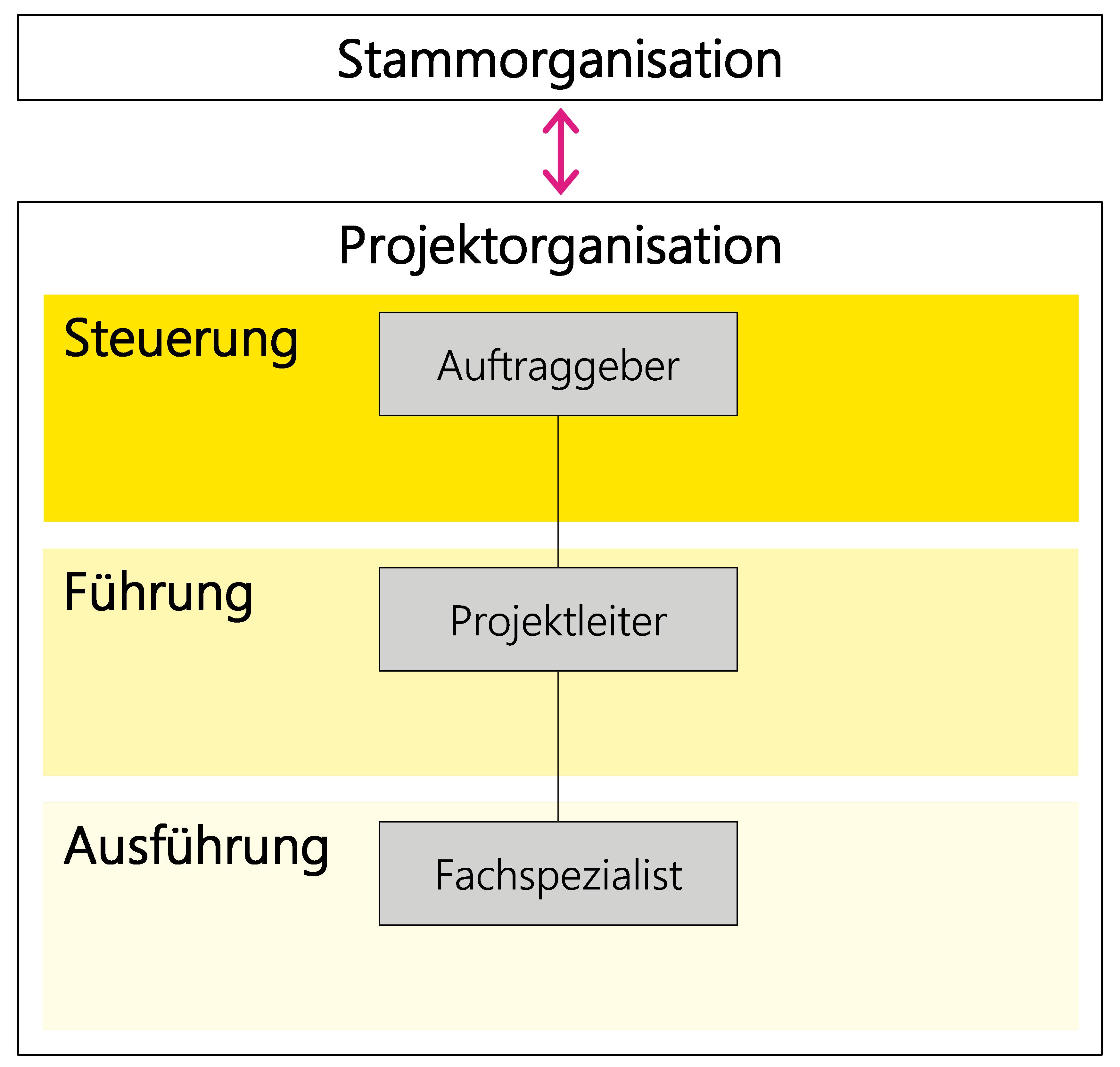 Abbildung 4: Beziehung der Stamm- und Projektorganisation